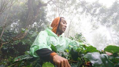Peringati Hari Tani, Dompet Dhuafa ingin petani semakin sejahtera